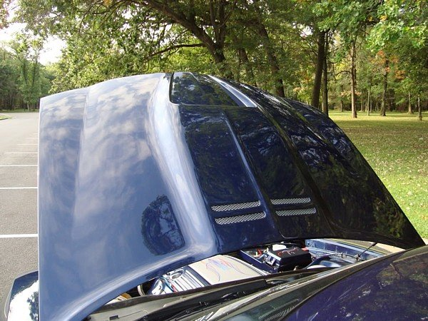 Pictures of VFN AAR Style Hood - on Car | Charger Forums